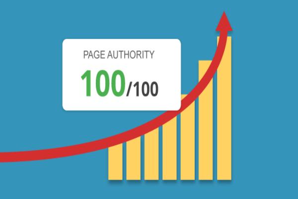 A estrutura de uma página bem ranqueada – SEO On-Page